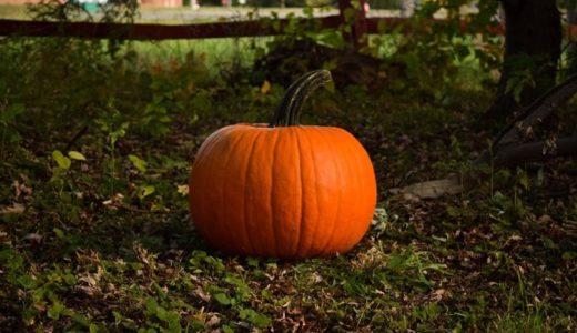 かぼちゃ – 「サプリメント」に頼らない野菜戦略(2)